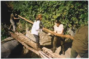 Bridge Building - Eora Creek1