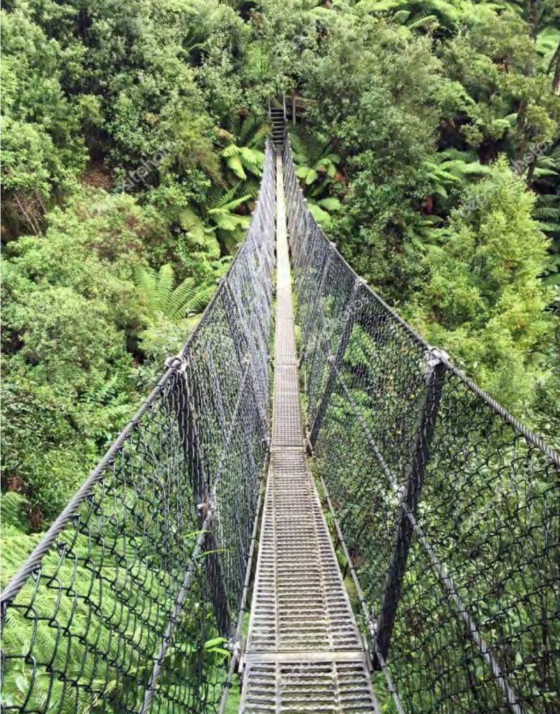 Proposed design of prefabricated bridges for the Kokoda Trail