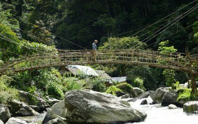 Kokoda Trail Bridges: Prefabricated or Traditional?