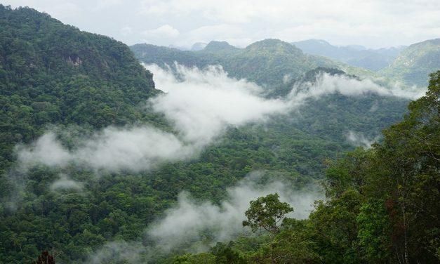 Owers Corner: Neglected Gateway to the Kokoda Trail